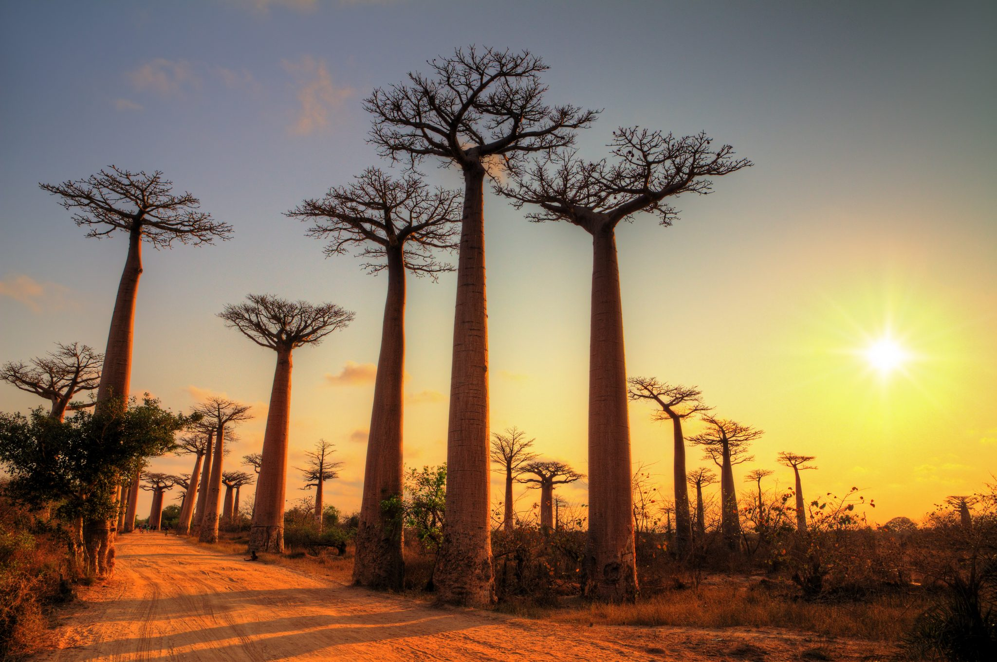 mete naturali africane