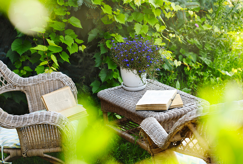 Come creare un giardino romantico